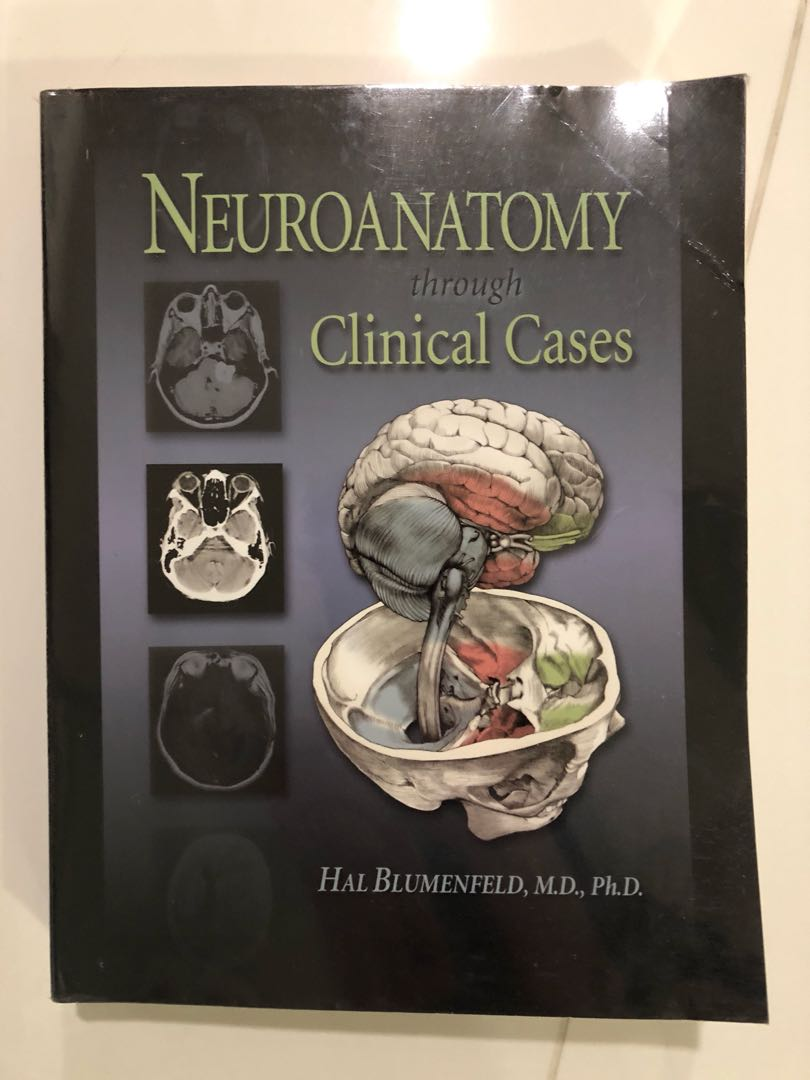 Neuroanatomy Through Clinical Cases Books Stationery Fiction On