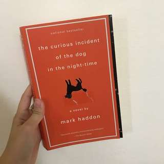 The Curious Incident of the Dog in the Night Time by Mark Hadden