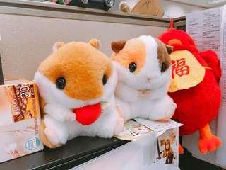 Pair of hamsters 倉鼠