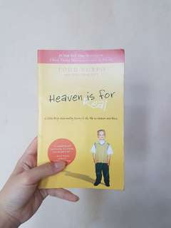Book: Heaven is For Real by Todd Burpo