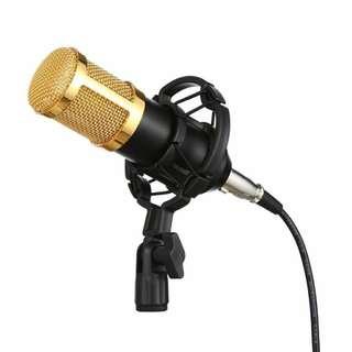 BM 800 Condenser Recording Microphone
