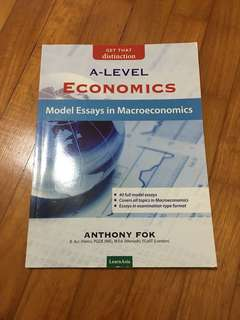 macroeconomics model essays by Anthony Fok