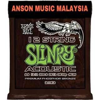 Ernie Ball 2153 Slinky Phosphor Bronze 12-String Acoustic Guitar Strings