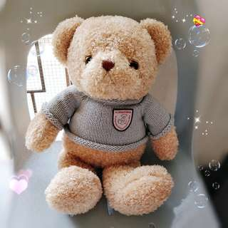 Teddy Bear 🐻 New * my collection