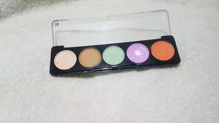 Miss Rose Correcting Palette