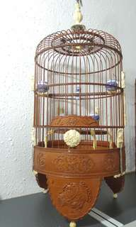 FPC cage 3