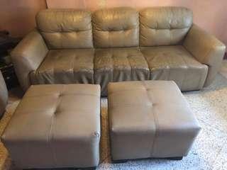 Sofa (Whole Set)