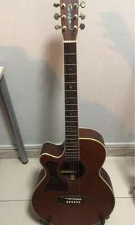 Tanglewood TW45NS - hard case included