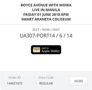 Boyce Avenue + Moira Concert