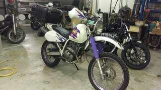 Djebel 250 COE Nov2027 Scraping soon!!