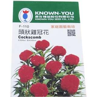 🚚 {綠花緣} 農友 頭狀雞冠花(單色) - 花卉種子