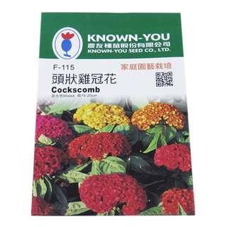 🚚 {綠花緣} 農友 頭狀雞冠花(雙色) - 花卉種子
