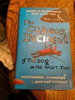 The curis incident of the dog in the night-time