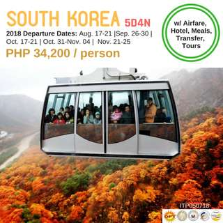 5D4N South Korea Tour Package