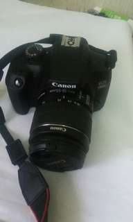 Canon for rent
