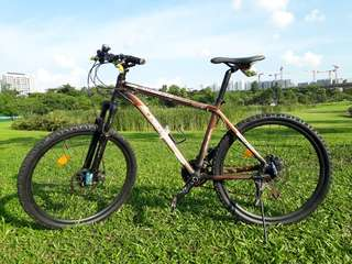 Polygon Xtrada 4.0 Mountain Bike