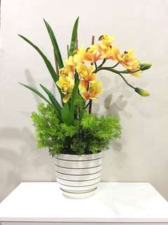 DECO ORCHID