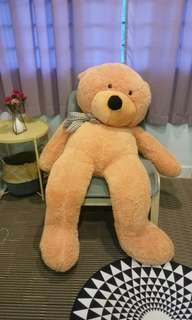 Giant Teddy Bear Preloved