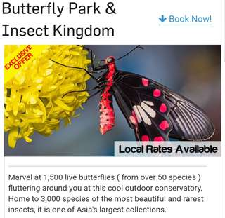 Butterfly Park and Insect Kingdom, Sentosa
