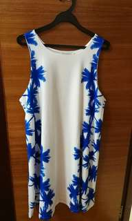 Tracyeinny blue and white dress