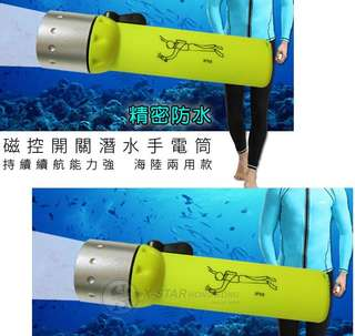 1629245 強光LED diving 潛水電筒 Flashlight Dive Light Bulb