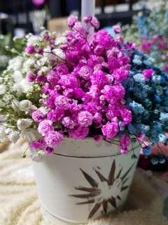 Tri Colour Baby Breath Flower Bouquet Pot