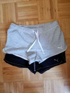 Puma shorts size XL