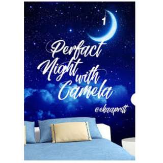 Ebook Perfect Night With Camela - EAS