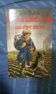 The Twelve Silver Cups ( Enid Blyton)
