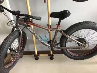Raleigh Fat Bike