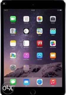 iPad mini2 (Cellular)
