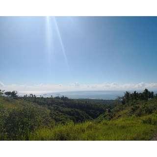 farm lot for sale in Naga cebu