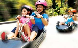 1 Ride only @ Skyline Luge!