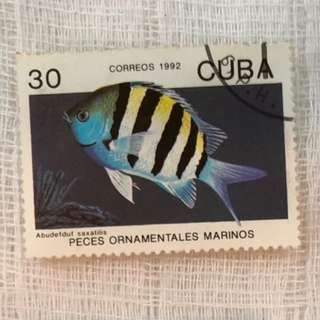 Worldwide Old Stamp