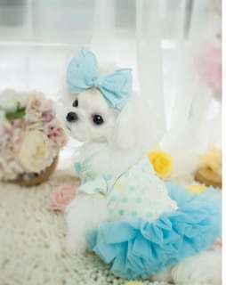 (PO) Flower Buttons Tutu Dress