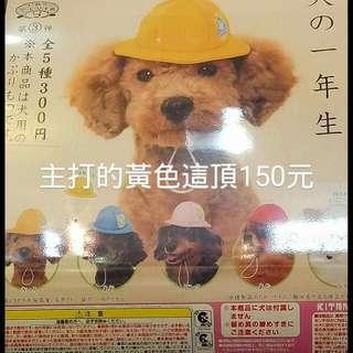 【日本扭蛋寵物帽子】必買款。。