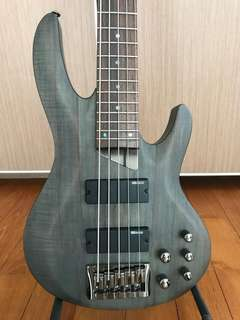 ESP Ltd b205 bass guitar