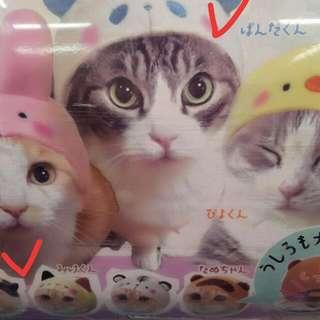 【日本扭蛋】寵物帽子。必買款。