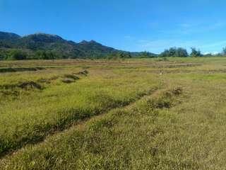 Lot for Sale Farm Lot Investment or Business Jalajala Rizal near Laguna