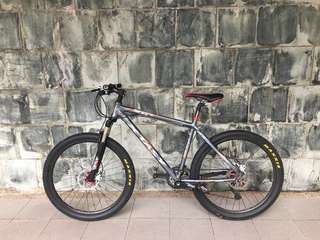 [FREE DELIVERY] Professional Custom Mountain Bike