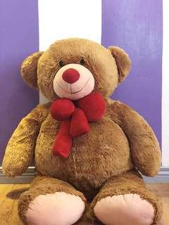 Life size teddy bear 🐻