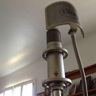 Studio Projects C1 Large-diaphragm Condenser Microphone