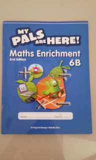 My pals Math Enrichment 6B