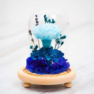 Blue Preserved Carnation Dome