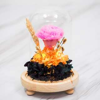 Pink Carnation Preserved Dome