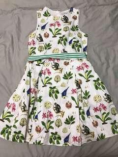 Gingersnaps dress