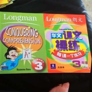 P3 Conquering Comprehension & Chinese