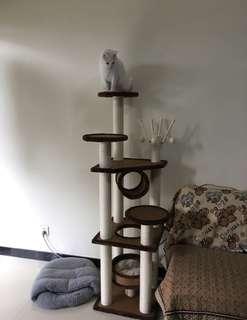 Cat tree/condo *Preorder
