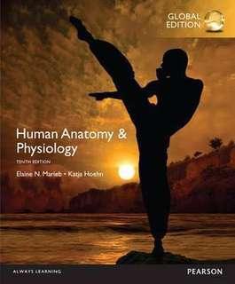Human Anatomy & Physiology, Global 10th Edition (By: Elaine N. Marieb, Katja N. Hoehn)