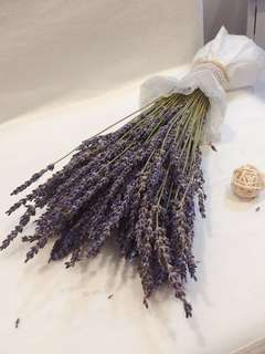 42cm Lavender Bouquet - from Holland